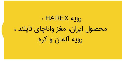 نمایندگی ام دی اف رویه HAREX