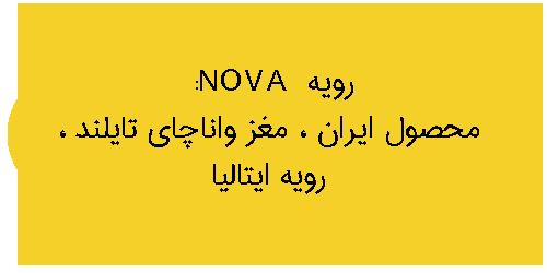 نمایندگی رویه nova